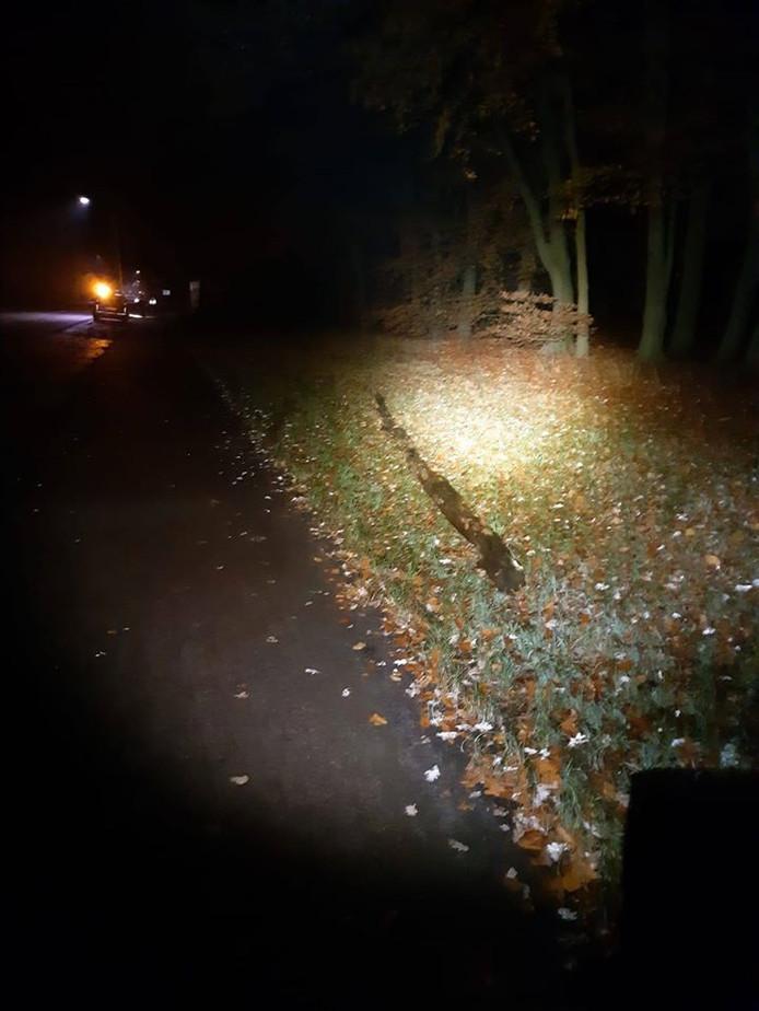 Vandalen legden in de nacht van vrijdag op zaterdag een grote boomstronk op de Groteweg bij Wapenveld. Een auto liep flinke schade op. De politie zoekt getuigen om de vandalen te achterhalen.