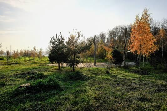 Een beeld van de Natuurbegraafplaats Slangenburg. In Sinderen zijn plannen om een dergelijke begraafplaats bij de Antoniuskapel aan te leggen.