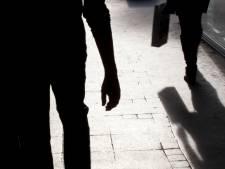 Zoetermeerder (16) meerdere keren in gezicht geslagen en overvallen in Oosterheem