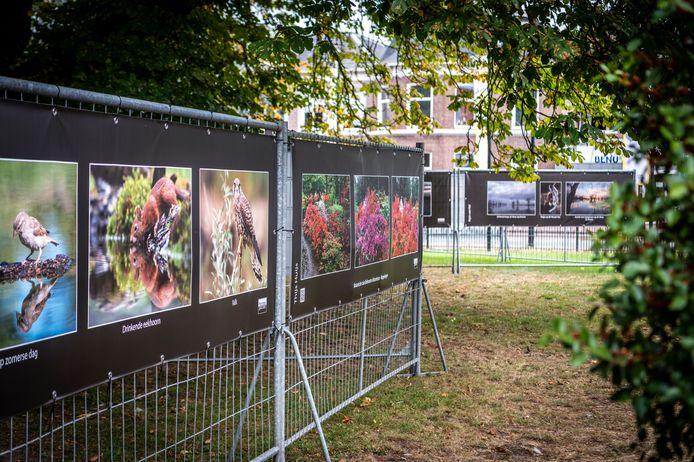 In het Jan Cunenpark hangen dertig grote fotodoeken van fotoclub Focoss.