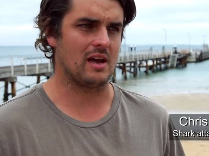 Surfer verliest been na aanval witte haai, mag bij hoge uitzondering tand van dier houden
