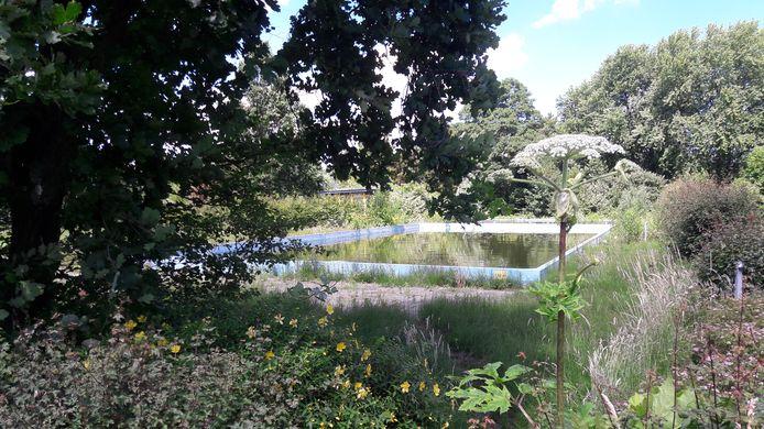 De huidige situatie van zwembad De Duikelaar in Hardinxveld-Giessendam.