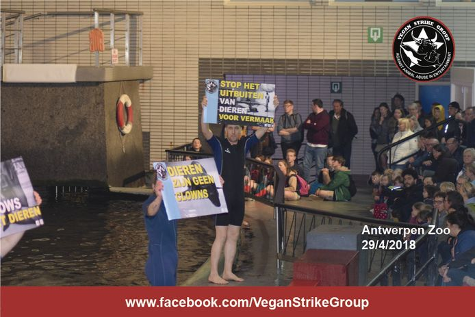 Beeld van de actie van de Vegan Strike Group vorige week.