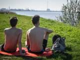 Brabant geniet volop van de zon: 'toch een beetje bruin worden'