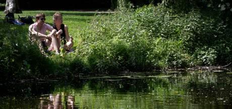 Trefpunt Groen Eindhoven: 'Niet bouwen in groene gebieden. Punt'