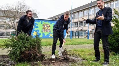 """Hete zomer fnuikt kerstbomenopvang Technisch Atheneum: """"Bomen hebben sproeiverbod niet overleefd"""""""