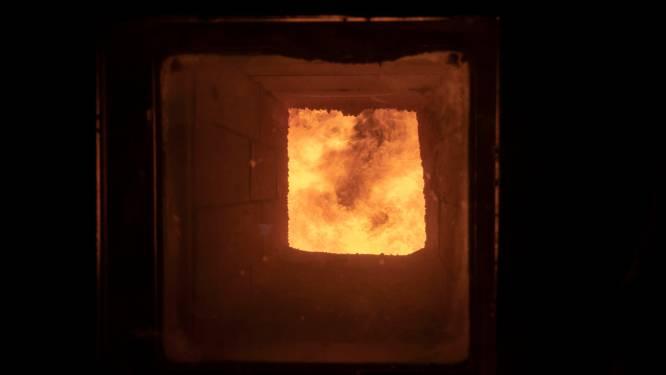 Ede stookt raadhuis op biomassa, maar hoopt in toekomst op andere warmte