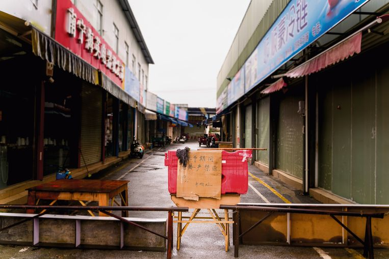 De dierenmarkt in Wuhan.  Beeld De Speld