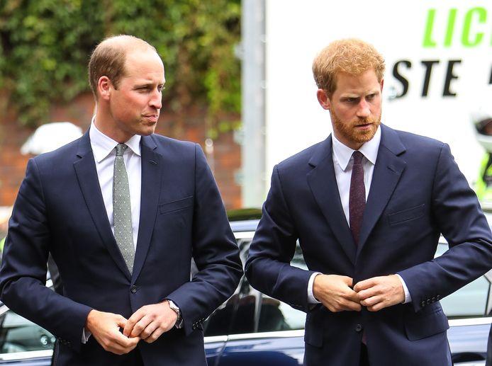 Les princes William et Harry, en 2017