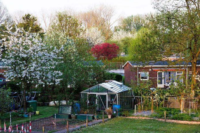 De Wielewaal. Het Rotterdamse tuindorp moet wat de gemeente, woningcorporatie en ontwikkelaar betreft op de schop.
