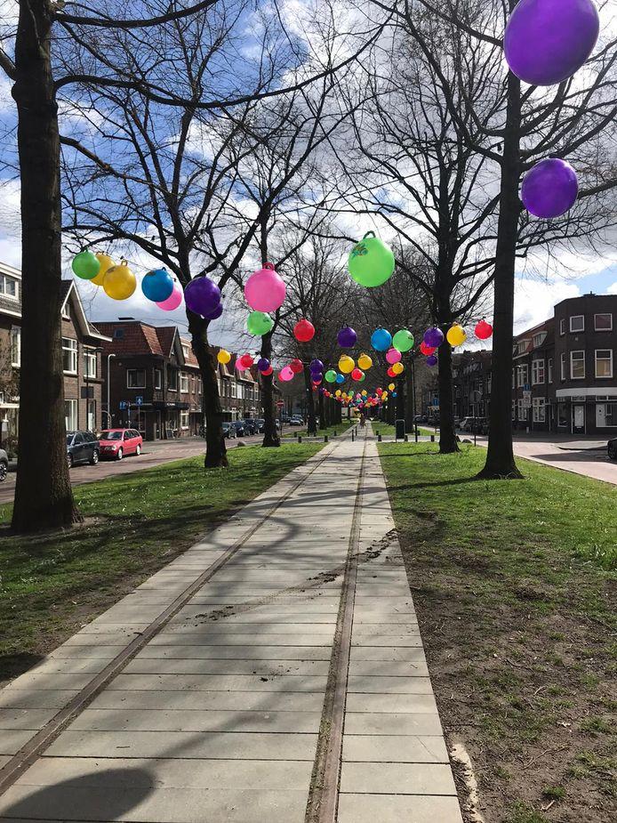 De stichting TopOpKids heeft 750 skippyballen opgehangen in de Speelhuislaan in Breda. Het gaat om een actie om geld in te zamelen voor kinderen die hulp kunnen gebruiken.