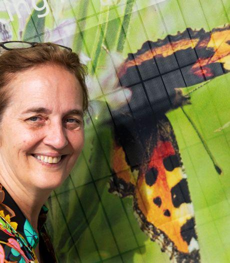 Gera is projectleider van Vlindertuin de Zindering: 'We hebben al vijftien soorten vlinders gespot'