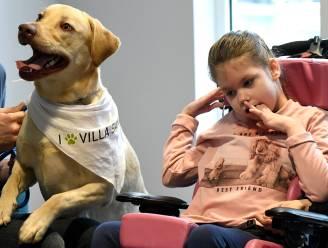 Primeur: knuffelen met je huisdier in UZ Brussel, vanaf december kan het