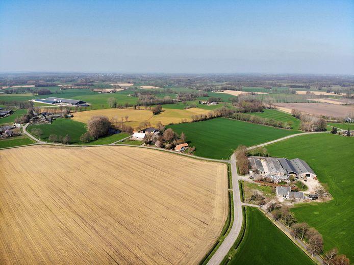 Gele weilanden tussen Delden en Goor, als gevolg van het gebruik van glyfosaat.