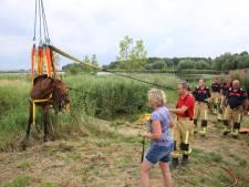 Paard met hulp van brandweer uit water getakeld