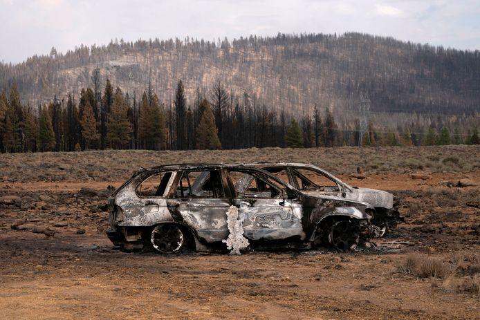 La saison des feux ne fait que commencer et 80 gros incendies sévissent déjà à travers les États-Unis, où ils ont consumé plus de 4.700 km² de végétation.