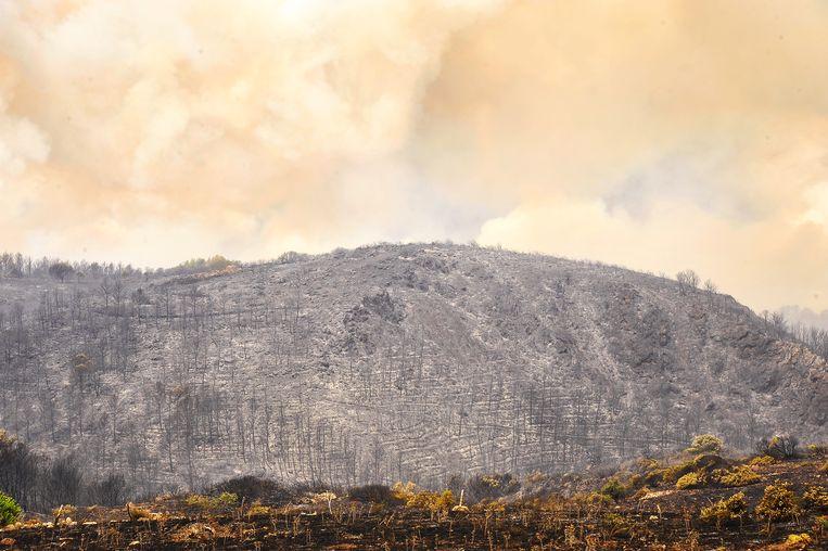 Door de verwoestende branden zijn ook hele delen van het Italiaanse eiland Sardinië in de as gelegd. In de provincie Oristano, in het westen, is naar schatting 20.000 hectare land verbrand. Honderden mensen moesten hun huizen verlaten. Beeld KONTROLAB/LightRocket, Getty
