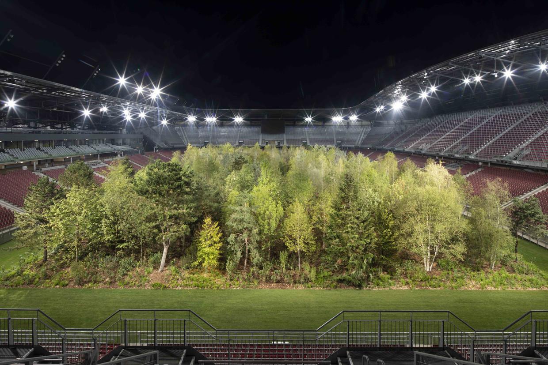 Het bos om naar te kijken van Klaus Littmann in het stadion in Kärnten. Beeld Gerhard Maurer