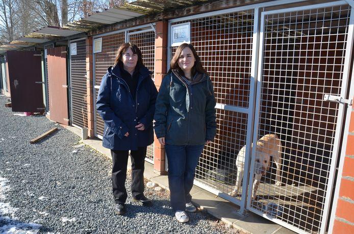 Martine Van Den Steen en Katrien Reygaerts, de uitbaters van het asiel van Ninove, bij de verouderde kennels van de honden.
