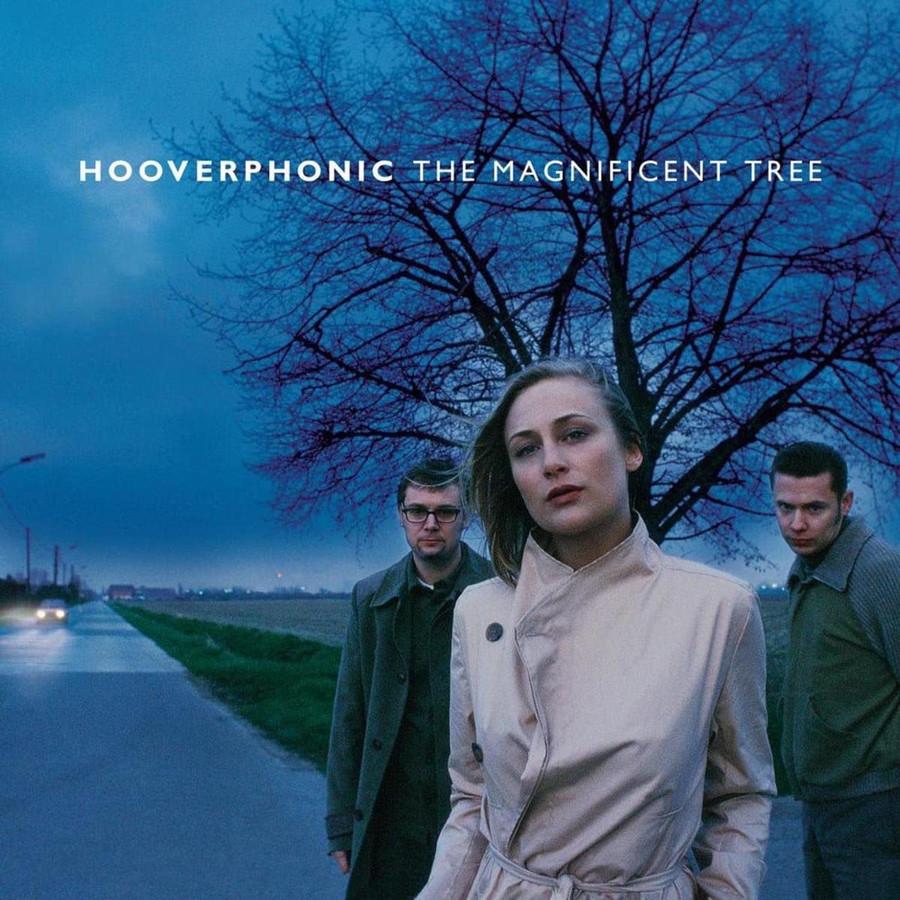 """De hoes van 'The Magnificent Tree': """"Deze foto is genomen aan de lange weg tussen Kieldrecht en Doel."""""""