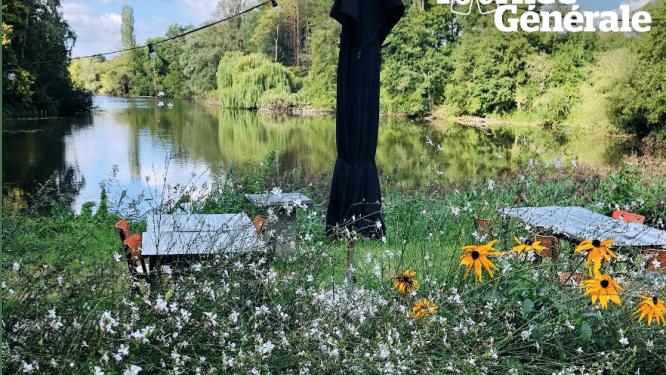 REEKS. 8 terrastips in het groen in de Kempen en het Rivierenland