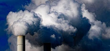 Te weinig hout voor biomassacentrales