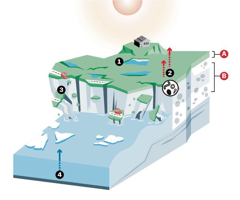 A: De actieve laag ontdooit in de zomer en bevriest weer in de herfst  B: Permafrost is een combinatie van aarde, rotsen en zand, bij elkaar gehouden door ijs  1: De aarde warmt op, de bevroren grond verandert in modder  2: Microben beginnen het plantaardig materiaal af te breken waardoor broeikasgassen ontstaan   3: Door de dooi ontstaan aardverschuivingen waardoor o.a. huizen en wegen worden vernietigd  4:Zeespiegel stijgt Beeld Laura van der Bijl