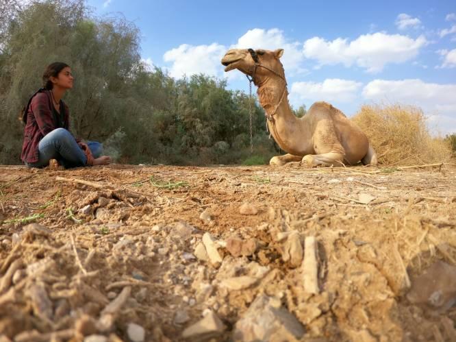 Vrijgekocht met coronavaccins: het meisje dat er ongewild voor zorgt dat Syrische dictator zijn inenting krijgt