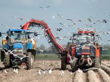 Onderwijsproject moet begrip kweken tussen boer en burger