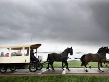 Overleden 'paardenman uit Maurik' maakt zijn allerlaatste rit omringd door geliefden in paardentram