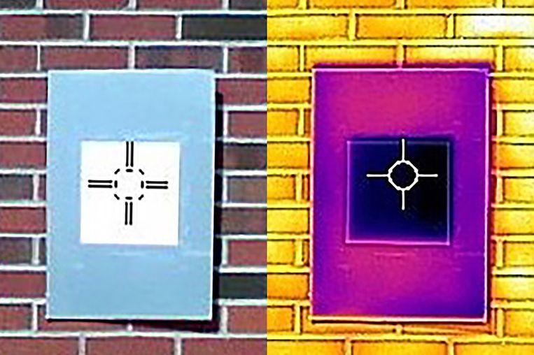 Een infraroodcamera laat zien dat het 'ultrawit' (het donkerpaarse vierkant in het midden) het bord afkoelt tot onder de omgevingstemperatuur.  Beeld Purdue University/Joseph Peoples