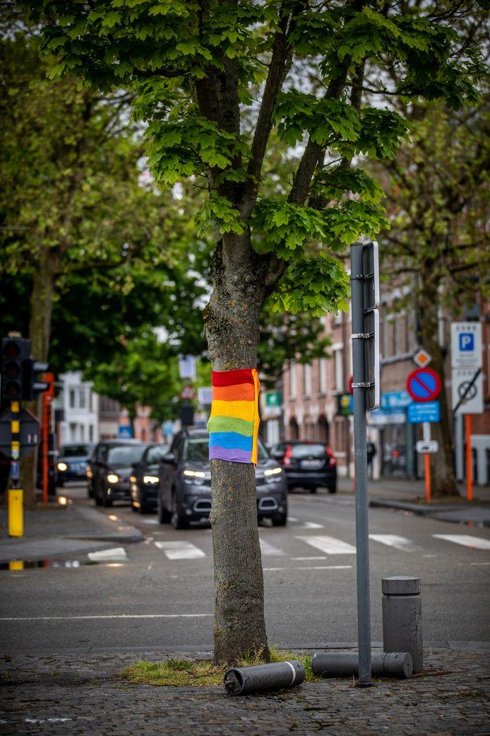 Eén van de regenboogbomen aan de Groene Boulevard.