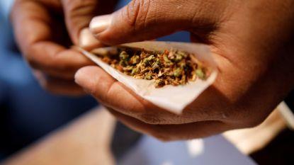 Dealer verkocht weer cannabis amper twee maanden na zijn vrijlating