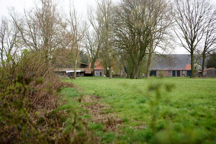 BLADEL - In Bladel wordt gekeken wat er met de Groene Long moet gebeuren. Dat is een gebied gelegen tegen het centrum. Om precies te zijn ligt het tussen de Beemdstraat, Zwartakkers en Postelweg.