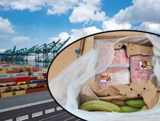 Vader (74) en twee zonen in de cel voor smokkel van 3.300 kilo cocaïne via Antwerpse haven
