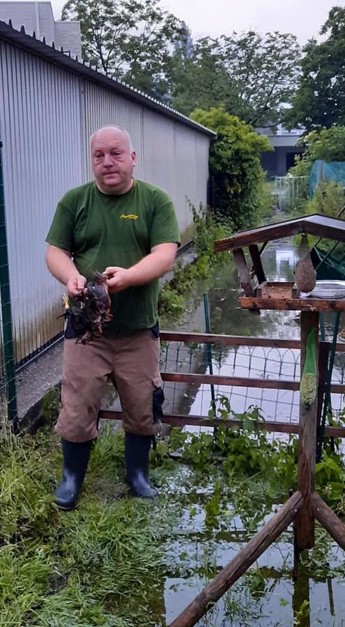 Henk Willocx verloor zijn kippen bij de zware wateroverlast.