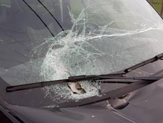 Tractor brengt zware schade toe aan geparkeerde wagen en pleegt vluchtmisdrijf
