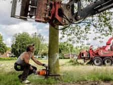SP verbolgen over kap in Moordrecht: 'Bomen Sjaloomlocatie al gerooid voor besluit was genomen'