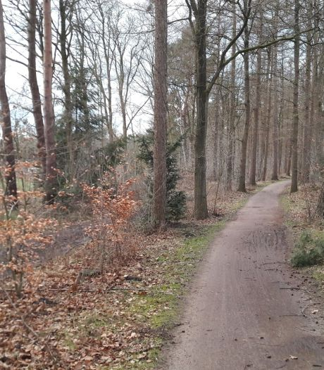 Motie bepleit verbod op natuurbegraven in Soest