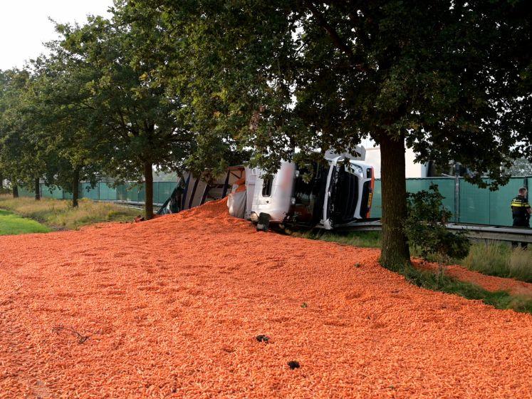 Vrachtwagen met wortels gekanteld op A58 bij Bavel