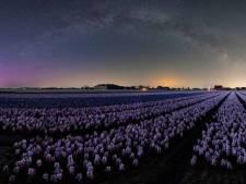 Des aurores boréales pourraient bientôt être visibles en Belgique