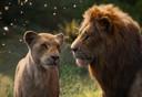 Nala (Beyoncé) en Simba (Donald 'Childish Gambino' Glover)