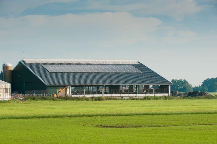 Boerendaken zijn uitermate geschikt voor zonnepanelen, maar door de netcongestie kunnen veel van deze systemen in de Achterhoek niet aangesloten worden op het net.