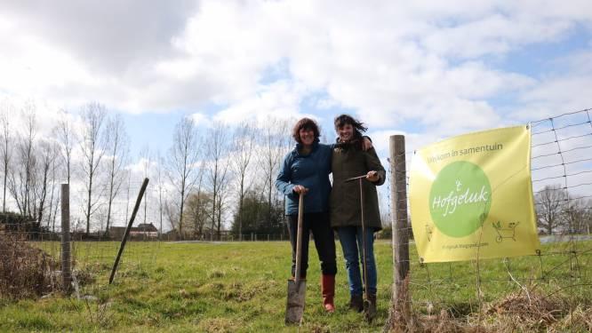 """Moeder Magdelien (64) en dochter Ariane (31) willen tuinplezier delen met 't Hofgeluk: """"Een bio-ecologische samentuin waar iedereen welkom is"""""""