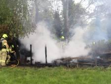 Automobilisten ontdekken brand in bosschages in Lunteren