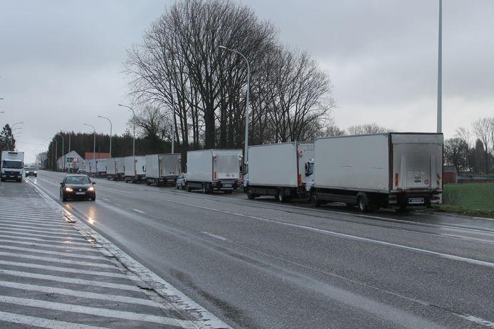 Een witte rij vrachtwagens staat iedere dag langs de Ninoofsesteenweg geparkeerd in Lennik. Met het parkeerverbod wil de gemeente Lennik de vrachtwagens weren.