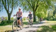 """Ingrepen op komst op populaire fietssnelweg naar Hulst: """"Bredere fietsverbinding is nodig"""""""
