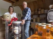 Bijen, kippen en schapen: Erve Hanebulten in Haaksbergen beweegt mee op het ritme van de natuur