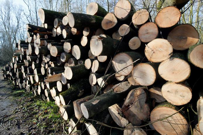 Een kleine honderd zieke en oude bomen langs provinciale wegen in Bunnik, Houten en Nieuwegein worden volgende week gekapt.
