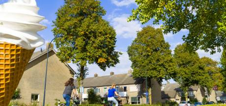 Waalwijk betreurt onrust over bomen: 'Lastig om het voor iedereen goed te doen'